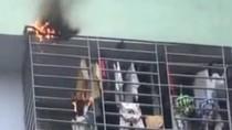 Clip: Cháy chung cư 17 tầng ở Hà Nội, hàng trăm người hoảng loạn