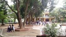 TS. Nguyễn Tùng Lâm: Bắt học sinh súc miệng bằng xà phòng là thiếu trách nhiệm