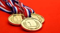 Cả 7 học sinh Việt Nam tham dự Olympic Tin học châu Á năm 2018 đều đoạt giải