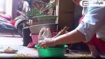 Chùm ảnh: Cận cảnh công nghệ nhuộm phẩm màu cho cốm ở Hà Nội