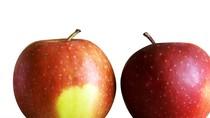"""Chuyên gia trái cây chia sẻ """"mẹo"""" phân biệt táo Mỹ và táo Trung Quốc"""