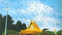 Chiêm ngưỡng chỉnh thế kiến trúc độc đáo của chùa Dơi (Sóc Trăng)