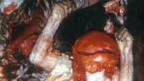 Nhẫn tâm, quái gở món ăn tẩm bổ bằng... thịt voọc