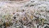 Trời đổ rét đột ngột về đêm, miền biên Nghệ An xuất hiện băng tuyết