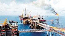 Hội nghị khoa học kỷ niệm 30 năm khai thác dầu từ tầng đá móng mỏ Bạch Hổ