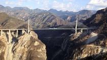 Cầu dây văng cao nhất thế giới