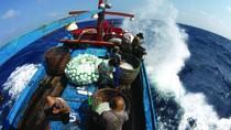 """Cận cảnh: săn cá ngừ trên """"cánh đồng"""" Trường Sa"""