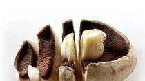 Điểm mặt 14 loại thực phẩm giàu can-xi cực tốt cho sức khỏe