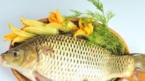 Những lợi ích không ngờ của cá chép đối với sức khỏe