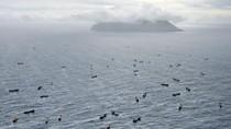 Báo Nhật:Trung Quốc dùng tàu cá quy mô lớn xâm phạm lãnh hải Nhật Bản