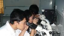 Sẽ hỗ trợ 20.000 sinh viên nghiên cứu khoa học
