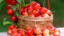 9 thực phẩm giúp bạn vui vẻ, hưng phấn trong mùa đông