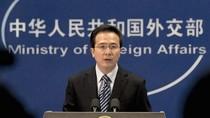 Hồng Lỗi phủ nhận tin Hải quan Trung Quốc gây khó dễ cho DN Nhật