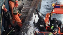 Báo chí Hàn Quốc: Ngư dân Trung Quốc không khác gì cướp biển