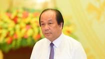 Báo cáo thực hiện nhiệm vụ Chính phủ, Thủ tướng giao tại cuộc họp thường kỳ