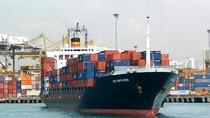Tàu biển Việt Nam nhiều, nhưng hoạt động manh mún?