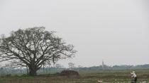 Chùm ảnh: Một thoáng phong cảnh làng quê đầu năm