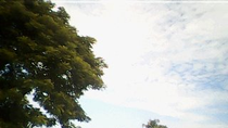 Chùm ảnh: Một góc quê nhà Đồng Tháp