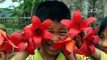 """Góc ảnh độc giả: Những đứa trẻ """"được mùa"""" hoa gạo"""