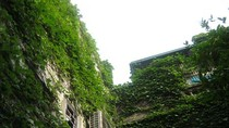 Ngắm những không gian xanh điểm xuyết phố cổ Hà Nội