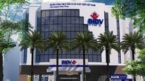 Lập khống mục đích vay vốn, Ngân hàng BIDV vẫn giải ngân hàng tỷ đồng