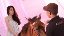 Thủy Tiên: Sau cõng trăn, giờ là cưỡi ngựa