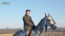 Kim Jong-un lần đầu cưỡi ngựa tạo dáng chụp ảnh