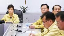 Tổng thống Hàn Quốc: Thuyền trưởng bỏ mặc phà chìm là giết người