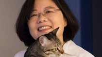 Tướng Trung Quốc xúc phạm Tiến sĩ Thái Anh Văn: Không chồng nên cực đoan