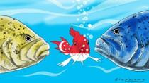 Doanh nghiệp Singapore làm ăn tại Trung Quốc bắt đầu bị quấy rối vì Biển Đông