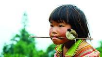 Hình ảnh 'độc' về trẻ em miền núi không cần lời bình chỉ có ở VN (P21)