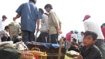 Chùm ảnh: Những đứa trẻ ở chợ phiên Bắc Hà