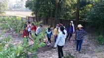 Học sinh trường Lê Lợi được thực hành nghề phổ thông ngoài thực tiễn