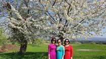 """""""Mon Cheri"""" – Rừng hoa Anh đào ở Đức với những tà áo dài Việt Nam"""