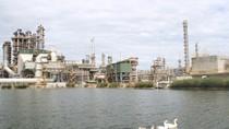 """Nhà máy Lọc dầu Dung Quất đạt Top 10 """"Nhà máy xanh thân thiện"""" 2018"""