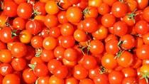 Công dụng làm đẹp da từ cà chua