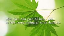 Giáo sư Nguyễn Lân Dũng đọc giùm bạn (24) - Tình thương