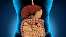 Tất cả những gì bạn cần biết về bệnh viêm ruột