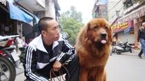 Chùm ảnh: Giật mình với thú ăn chơi của đại gia Việt (Phần 2)