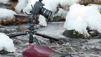 Thiên nhiên hoang dã ở bán đảo Kamchatka qua những hình ảnh sống động
