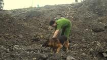 Hàng nghìn người dân xem chó nghiệp vụ tìm nạn nhân vụ lở đất ở TN