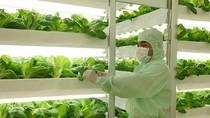 Tập trung xây dựng nền nông nghiệp thông minh