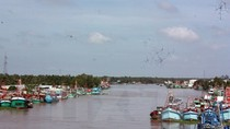Đầu tư hơn 3000 tỷ đồng xây dựng hệ thống thủy lợi Cái Lớn - Cái Bé