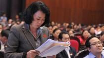 Bà Hoàng Yến khai lý lịch ứng cử Quốc hội 'sai sự thực'