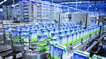 8 tháng đầu năm, Vinamilk thu về 2.860 tỷ đồng từ xuất khẩu sữa