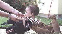 Chùm ảnh: chết cười với những hành động của trẻ con