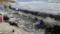 Vì sao sóng thần ở Nhật Bản lại lớn đến như vậy?