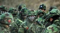 Quân đội Mỹ, Hàn Quốc tập trận không quân quy mô lớn