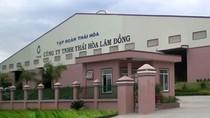 Tập đoàn Thái Hòa nợ ngân hàng trên nghìn tỷ