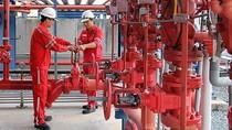 Khả năng sinh lời cao của cổ phiếu điện lực dầu khí Nhơn Trạch